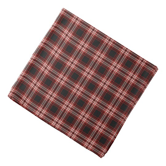 Tweedside District Tartan Kerchiefs