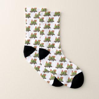 Tweet Trio Socks (choose colour)