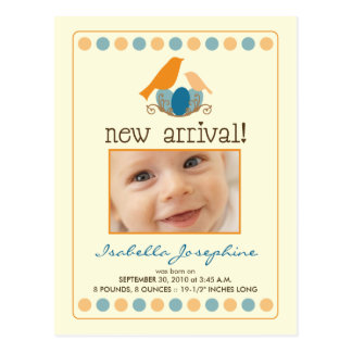 Tweet Tweet Baby Announcement Postcard (orange)