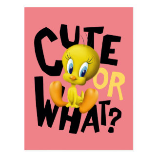 TWEETY™- Cute Or What? Postcard