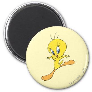 Tweety Landing 2 Inch Round Magnet