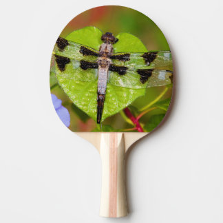 Twelve-spotted Skimmer Ping Pong Paddle