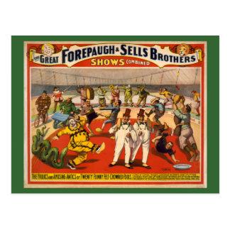 Twenty Funny Felt-Crowned Fools Circus Poster Postcard