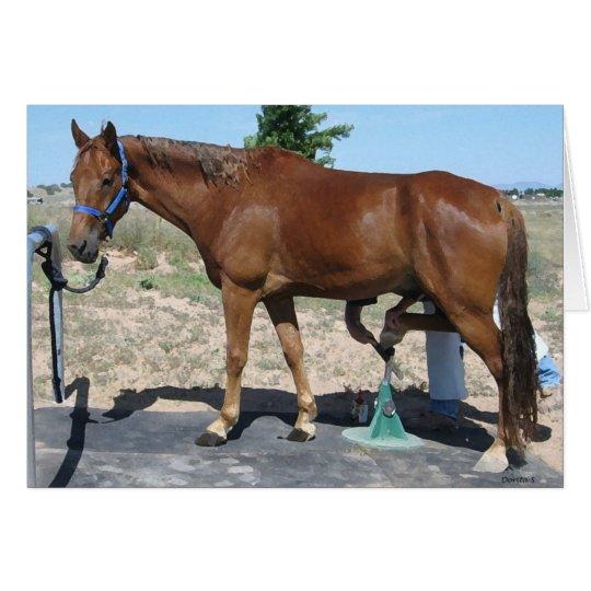TWH Horse Farrier Hoof Care - Blank Inside Card