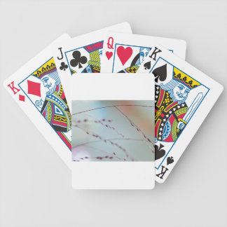 Twigs Bicycle Playing Cards