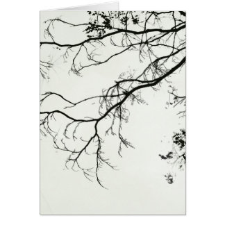 twigs whispering in the blank light of dawn card