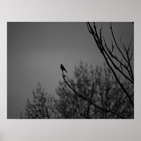 Twilight Bird Poster