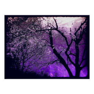 Twilight haze poster print