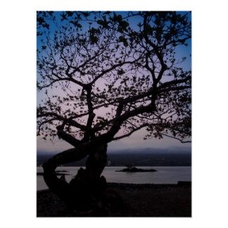 TWILIGHT on HILO BAY HAWAII Poster