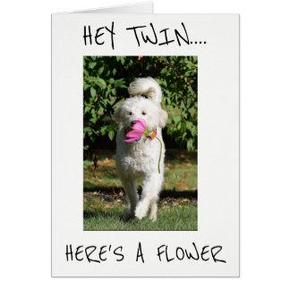 ***TWIN*** A FLOWER TO MAKE U SMILE  **39** HUMOR CARD