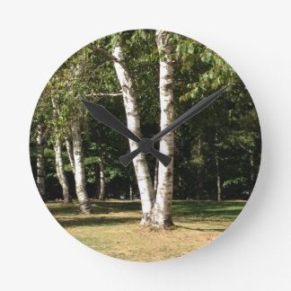 twin birch trees round clock