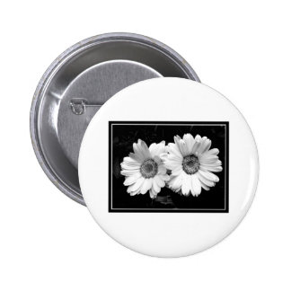 Twin Daisies Button