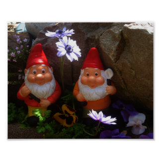 Twin Gnomes Floral Poster