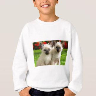 Twin Kittens Sweatshirt