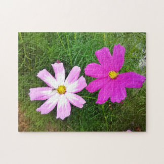 Twin Pink Cosmos Flowers Jigsaw Puzzle
