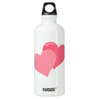 Twin Pink Hearts Water Bottle