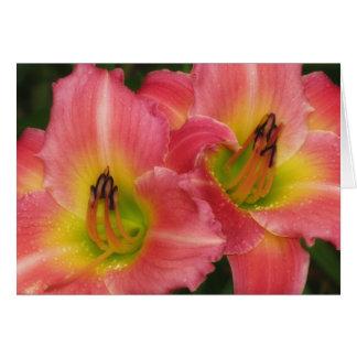 Twin Pinks - Pink Vogue Daylilies Card