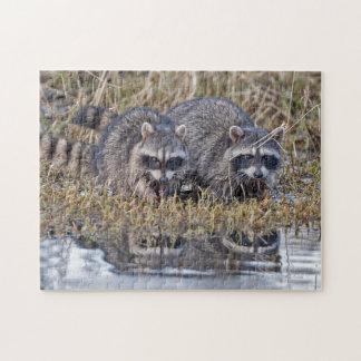 Twin Raccoons Jigsaw Puzzle