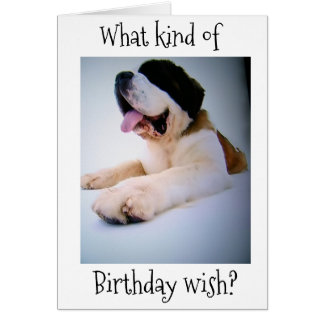 "**TWIN*** ST. BERNARD SENDS ""HUGE"" BIRTHDAY WISHES CARD"