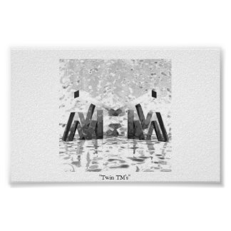 Twin TM's Poster