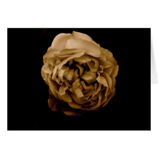 Twirly Rose Note Card