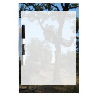 Twisty Tree Dry Erase Whiteboard