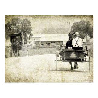 Two Amish Buggies Sepia Rural Road Postcard