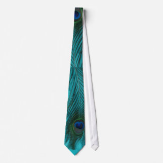 Two Aqua Peacock Feathers Tie