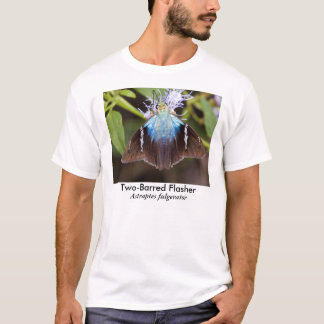 Two-Barred Flasher Butterfly T-Shirt