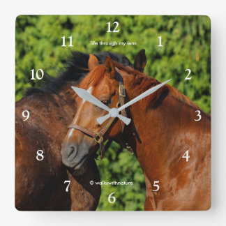 Two Beautiful Chestnut Horses in the Sun Clocks