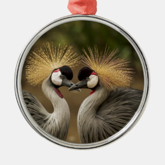 Two beautiful Grey Crowned Cranes kissing Silver-Colored Round Ornament