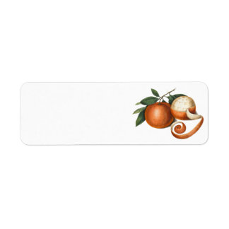 Two Beautiful Oranges - Antique Painting Return Address Label