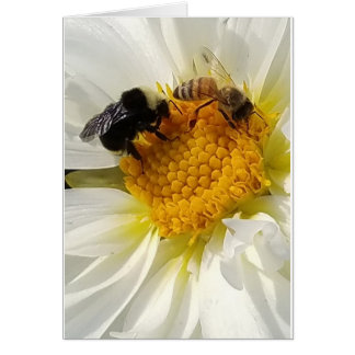 Two Bees on a flower card