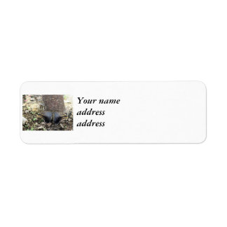 Two Big Moths Return Address Label