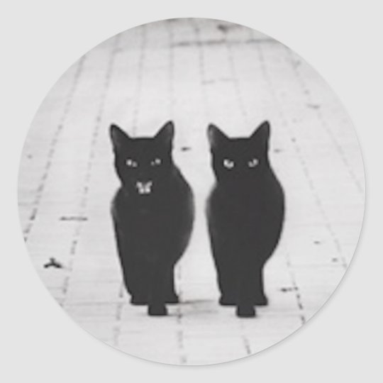 Two Black Cats sticker