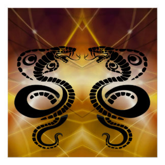 Two Black Cobras Facing off in Sunset Poster