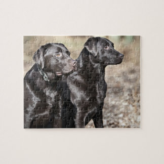 Two Black Labrador retrievers Jigsaw Puzzle