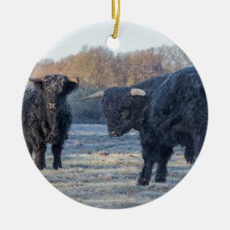 Two black scottish highlanders in frozen meadow ceramic ornament