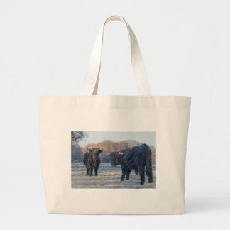 Two black scottish highlanders in frozen meadow large tote bag