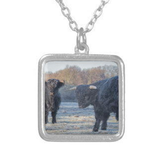Two black scottish highlanders in frozen meadow silver plated necklace