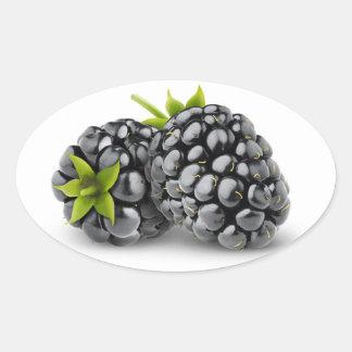 Two blackberries oval sticker