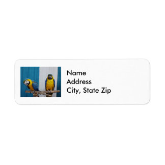 Two Blue and Gold Macaws Return Address Label
