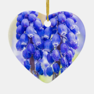 Two blue grape hyacinths in spring ceramic heart ornament