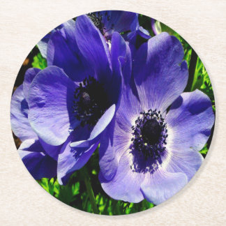 Two Blue Mauve Anemone - Close Up Windlowers Round Paper Coaster