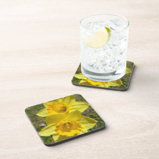 Two Bright Yellow Daffodils Coaster