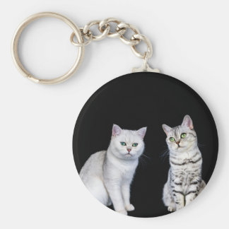 Two british short hair cats on black background keychain