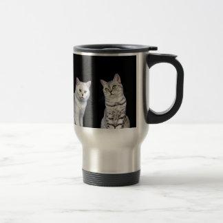 Two british short hair cats on black background travel mug