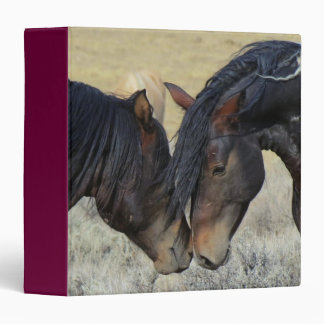 Two Brown Wild Horses Nuzzling 3 Ring Binders