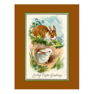 Two Bunny Easter Greetings Postcard