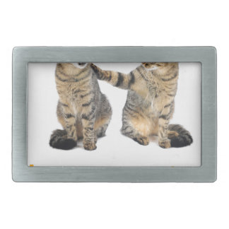 Two cats rectangular belt buckle